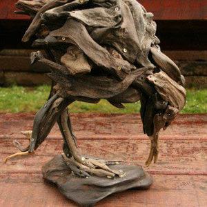 Jack Marsden Mayer - kiwi